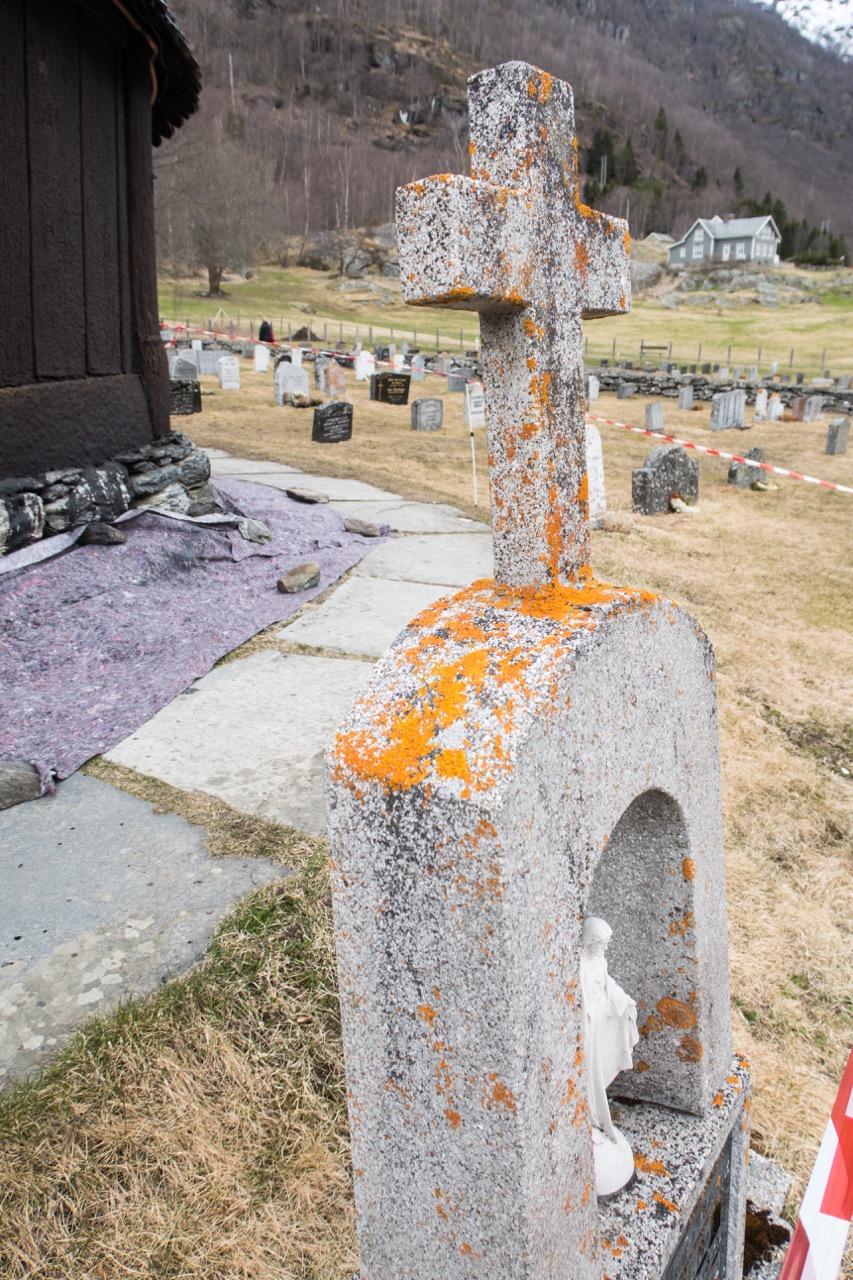 Krustenflechten auf dem angrenzenden Friedhof